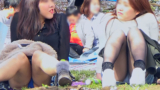 【セット販売】春爛漫!お花見美女パンチラ盗撮 ミニスカ美女たちの無防備なパンチラをバッチリゲット!!