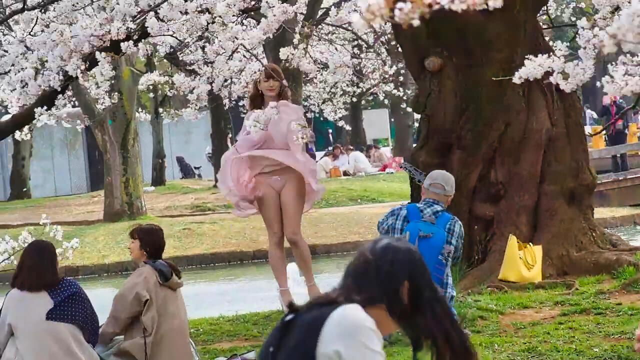 東京お花見散歩 強風の代々木公園で桜を愛でる 明日から外出自粛 桜も見納めか 2020/3/27 19