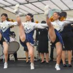 Cheerleading チア ⚾️ 明治大学応援団 バトン・チアリーディング部 JESTERS 2017 DIAMO
