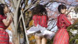 埼玉大学 SKR48 【第68回 むつめ祭 サル山公演 13時】 2017年11月26日@埼玉大学 サル山